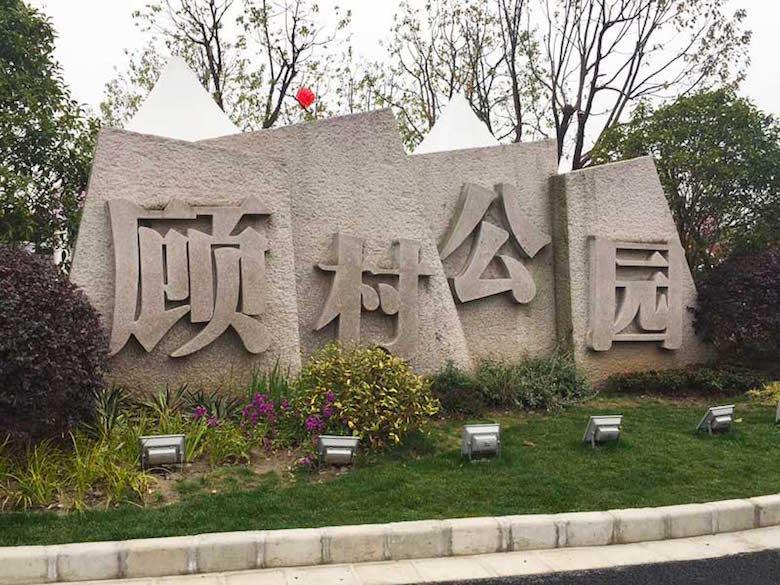 顾村公园1