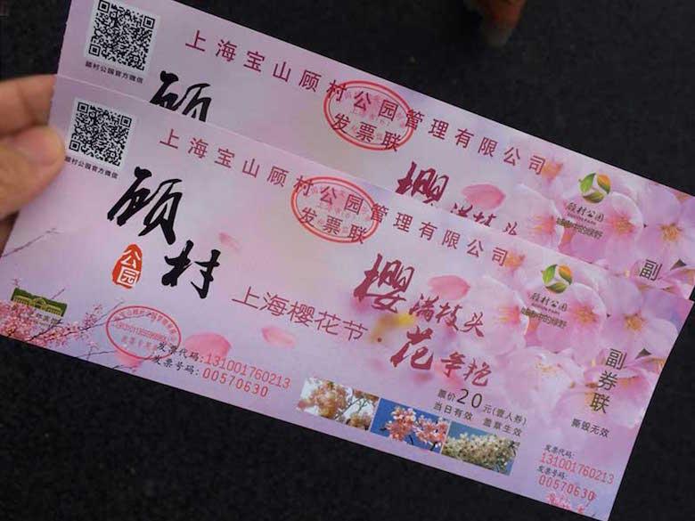 2017年上海樱花节1