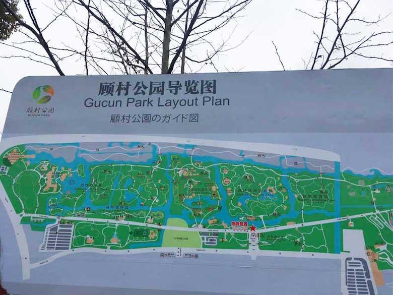 顾村公园2